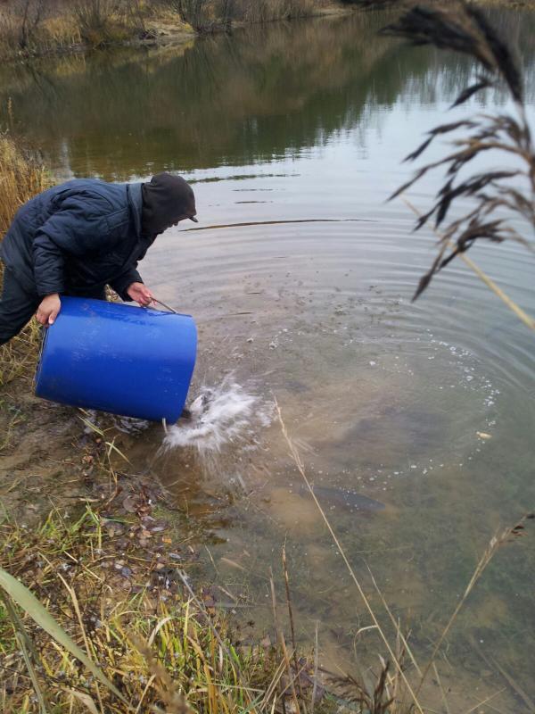 русфишинг форум fishhungry