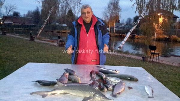 фишка рыбалка цены